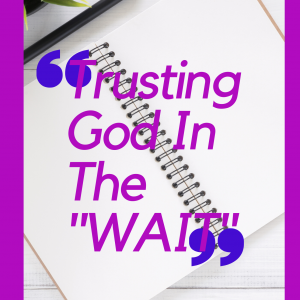 Trusting God In The Wait Ebook + Videos + FREE SURVIVAL KIT